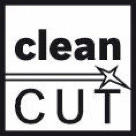 Bosch Szúrófűrészlap T 101 AO Clean for Wood