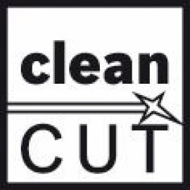Bosch Szúrófűrészlap T 301 CD Clean for Wood